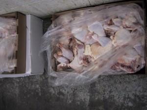 Chicken Storage2